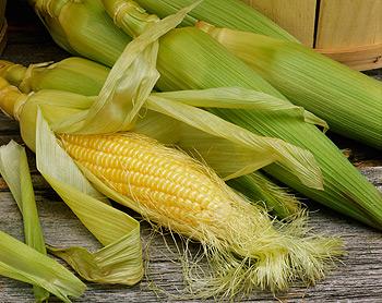 Кукуруза - калорийность