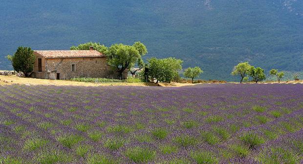 Прованс - это тихие симпатичные деревеньки, карабкающиеся